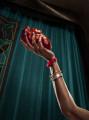 Filmfestivalen_Heart_MINT_LEV_V2